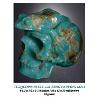 Turquoise Skull & Frog Carving